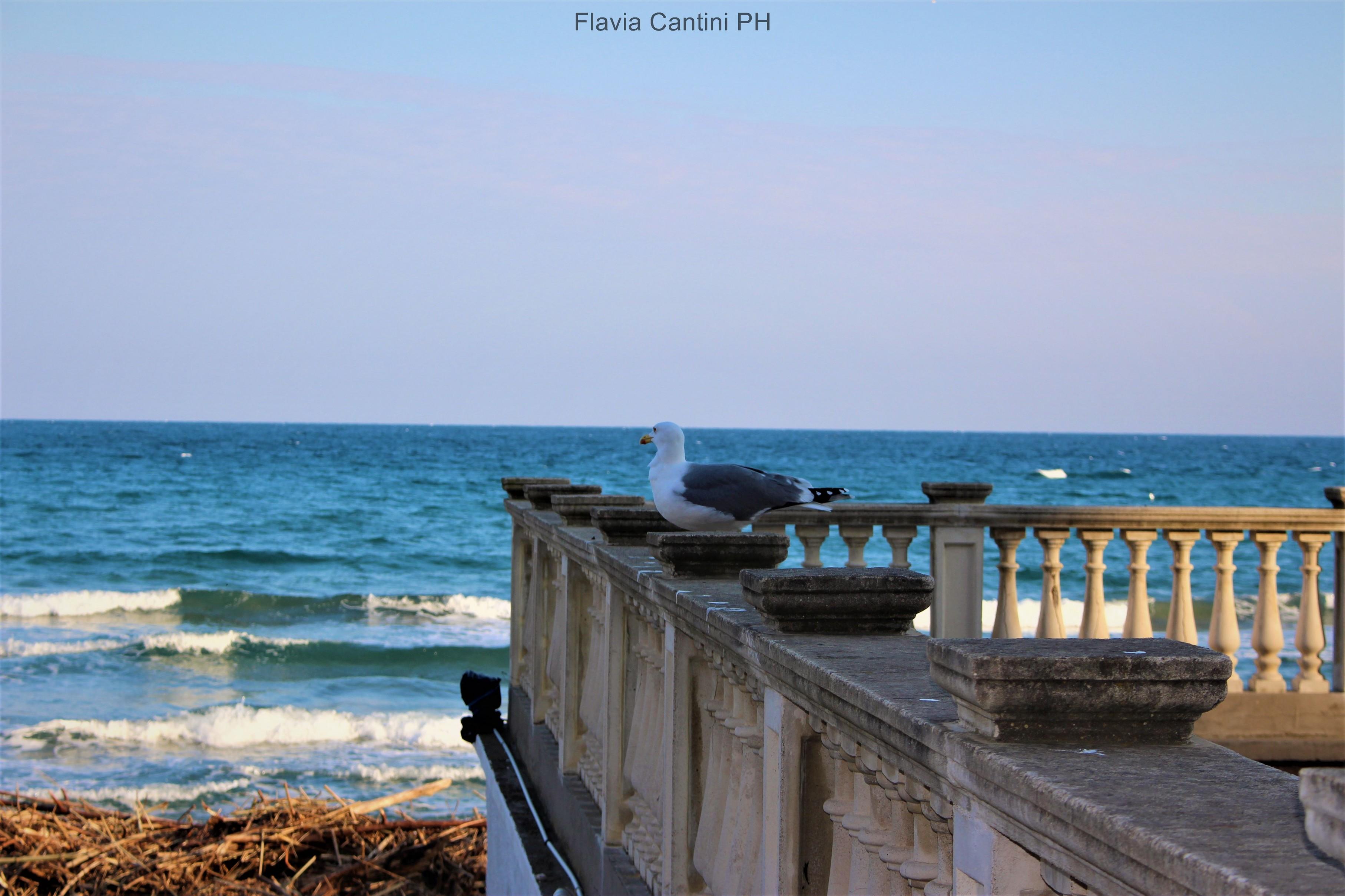 laigueglia-blog-flavia-cantini
